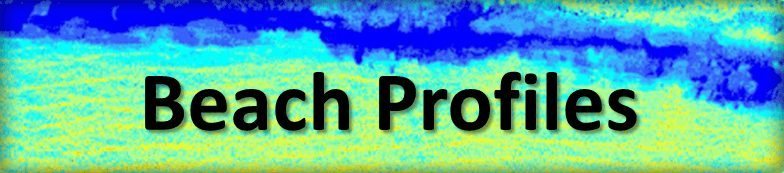 Beach_Profiles_Link