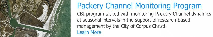 Packery Channel button