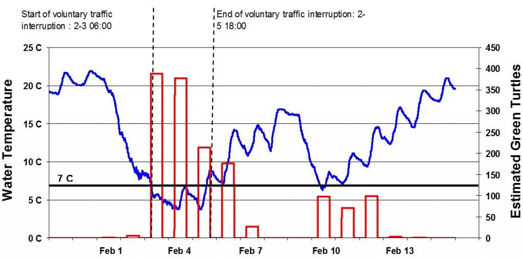turtle_graph1