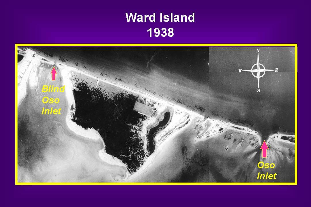 ward1938